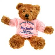 Brown Graduation Teddy Bear: Pink Jumper